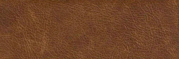 Pelle Sauvage colore Camel